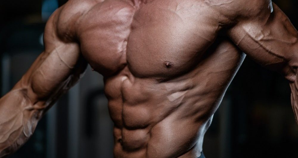 Prohormones 101: The Best Products, Results, Stacking & More